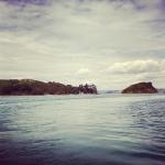 Arriving at Waiheke Island