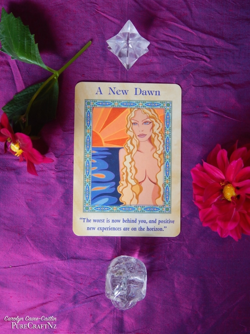 Mermaids & Dolphins Oracle by Doreen Virtue - A New Dawn